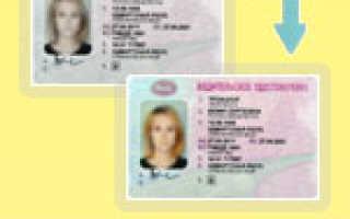 Как найти помощь в замене водительского удостоверения