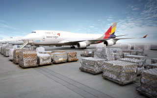 Расчет стоимости авиаперевозки груза