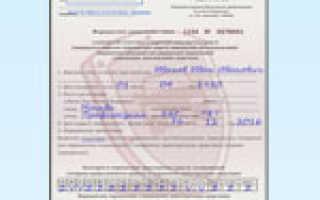 Новые правила получения водительского удостоверения