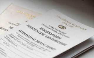 Венская конвенция о водительских правах