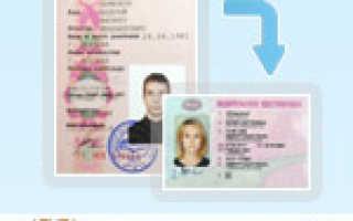 По каким правилам происходит замена водительских прав