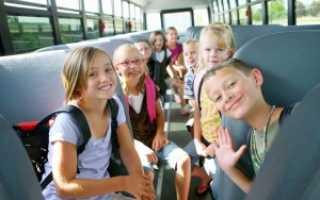 Какие требования предъявляются к школьным автобусам для перевозки детей
